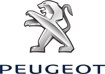 Obrázek pro výrobce Peugeot